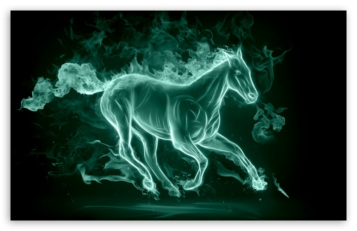2014_year_of_the_horse-t2